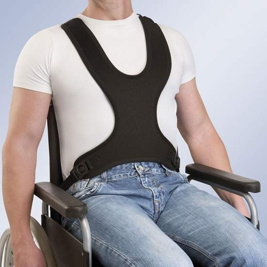 TECHNICAL vest harness...