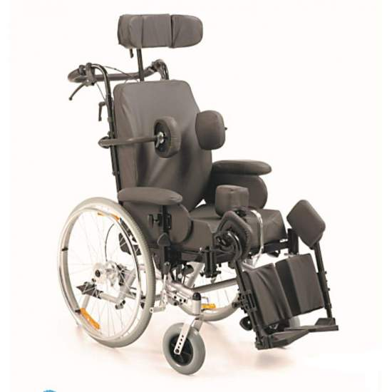Wheelchair Swing Balance